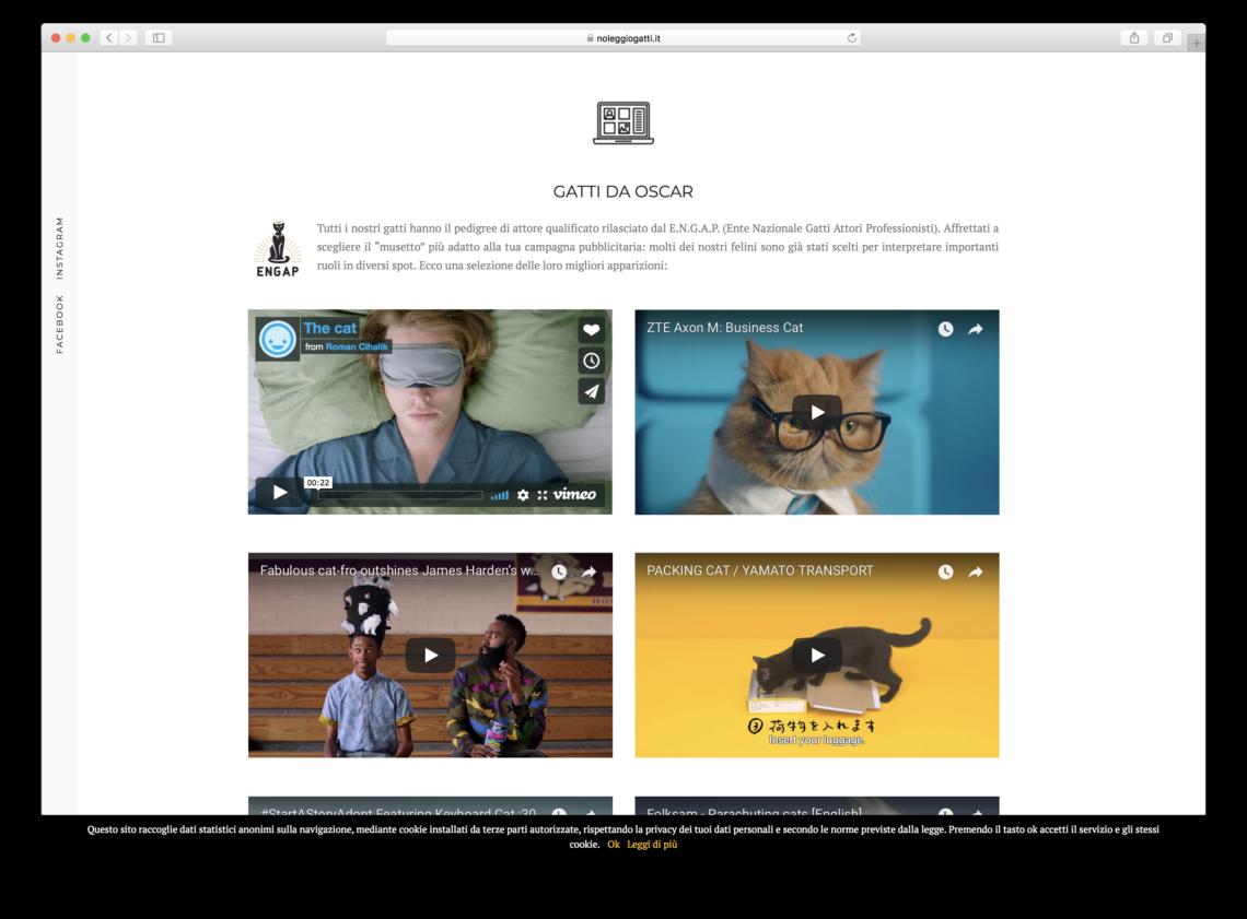 gatti social network